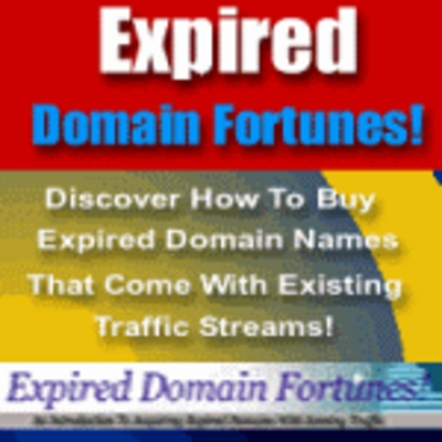 Product picture MakeMoneyOnline - Expired Domains Fortunes